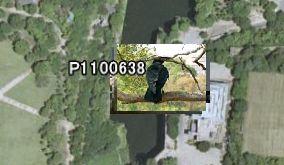Google Earth マウスカーソルon
